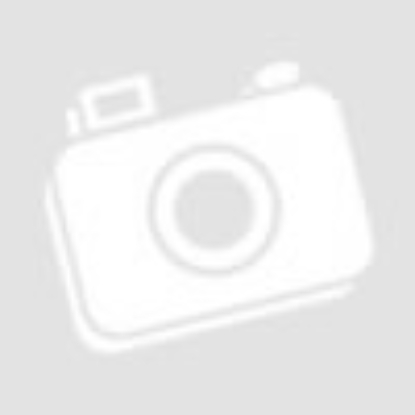 Savanya - Ágyas Cigánymeggypálinka 0.5 L 38%